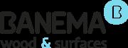 Logotipo Banema